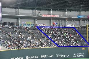 札幌 ドーム 座席